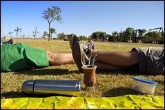 (elsueniero) Tags: ariel argentina buenosaires xavier olivos bsas marihuananoproblem