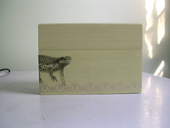 Salamander swimming box (jill draper makes stuff) Tags: hand box jewelry made etsy decoupage