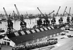 Göteborgs hamn 1956 (Håkan Dahlström) Tags: bw port göteborg puerto harbor sweden harbour crane schweden gothenburg cranes porto sverige hafen hamn gteborg