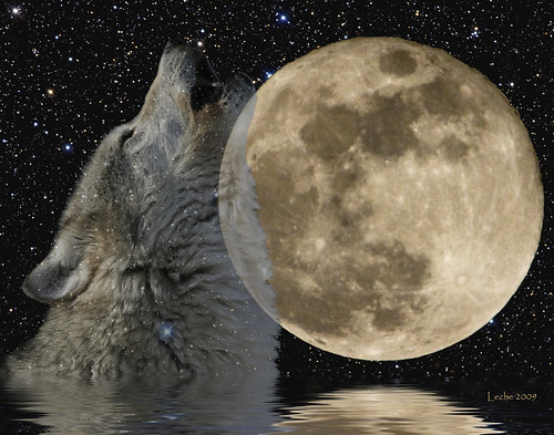 "Full ""Wolf"" Moon - January 22, 2008"