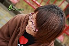 IMG_4917葵