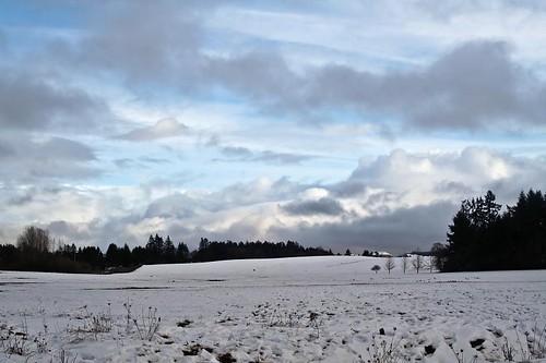 Snow Fields - fields covered in snow in Stayton Oregon
