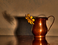 still life (sandropatrizia) Tags: sardegna stilllife sardinia breathtaking naturamorta 3way bigmomma blueribbonwinner abigfave anawesomeshot aplusphoto photofaceoffwinner platinumheartaward a3b thechallengegame challengegamewinner closetoreality betterthangood 5for5 sandroptarizia