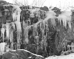 Icicles B+W (excard1970) Tags: winter blackandwhite bw ice massachusetts icicles peabody 123bw