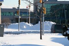 2008-02-13_16-07-25 (djp3000) Tags: winter snow toronto northyork apotex