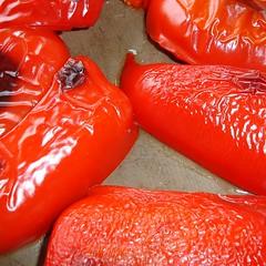 Peperoni geröstet vor dem Skalpieren