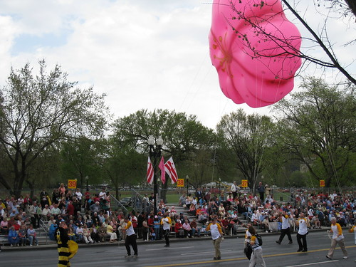 National Cherry Blossom Parade, DC