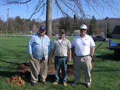 Tree Spade (4-15-08) 032