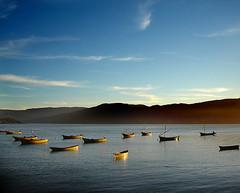 botes al amanecer (Errlucho) Tags: