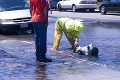 Fallen Soldier (juvaris863) Tags: firehydrant waterworks mitten juvaris