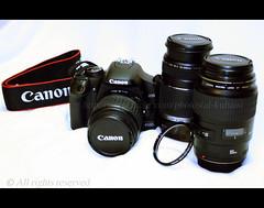 my new cam with lenses (ДĿΚußαisї) Tags: macro canon cam s filter lenses 450d alkubaisi الكبيسي