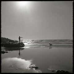 . (Rebecca...) Tags: uk sea blackandwhite bw dog sun man reflection 120 6x6 tlr beach water mediumformat point cornwall master command twinlensreflex ilfordfp4plus yashica24