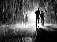 deafening (TranquilCacophony) Tags: rain rainroom lacma losangeles art museum blackandwhite artistic installation artinstallation hmbt monochromebokehthursday