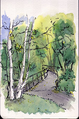 rio grand trail, aspen colorado (mike thomas) Tags: from trees fall moleskine pen watercolor painting sketch colorado drawing trail wash photograph aspen brushpen danielsmith artbookklub