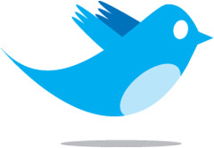 Twitter Bird (Alexandre Lemieux) Tags: phone text cell social networking sms messaging twitter