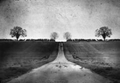 mirage (dave.ellis) Tags: horizontal photoshop landscape surreal thisone stich blancinegre bwdreams