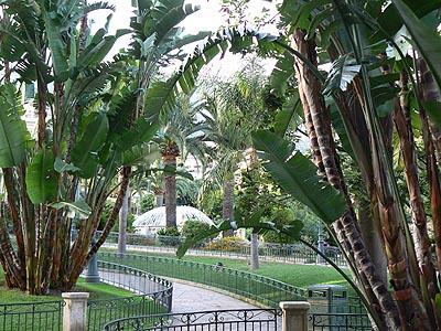 jardin public monégasque.jpg