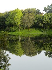 mirror lake (Sara{QATAR}) Tags: trees lake green water mirror refflection