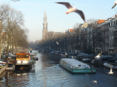 Westertoren in the winter (Bn) Tags: city seagulls water netherlands amsterdam architecture river gulls thenetherlands transportation prinsengracht mokum rondvaart soe grachten meeuwen jordaan westertoren supershot 10faves flickrsbest abigfave anawesomeshot aplusphoto diamondclassphotographer flickrdiamond