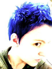 day 212 (bryiarrose) Tags: blue vivid bluehair conch electricblue 365days