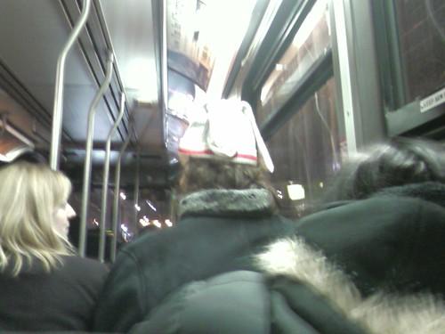 nifty hat that looks like socks