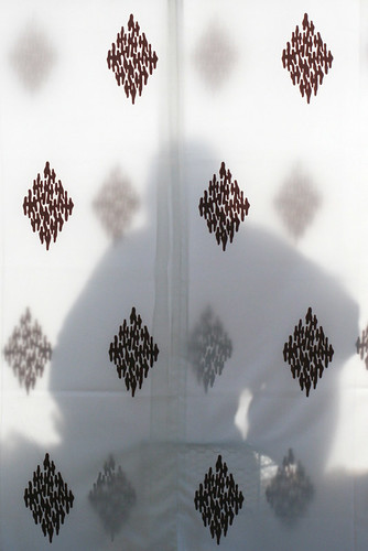 meiji-jingu: priestess