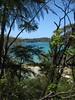 Near Torrent Bay (aussiestompy) Tags: newzealand nz abeltasman abeltasmannationalpark