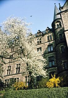 Spring in Marburg, Germany