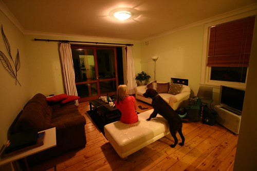 My host/friend Kate and the chocolate labrador Skuba in Bondi...