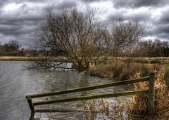 Wetlands: Old Fence (Tim Blessed) Tags: trees winter sky nature clouds reeds landscape countryside lakes wetlands ponds mywinners abigfave avision anawesomeshot superbmasterpiece singlerawtonemapped betterthangood llovemypic