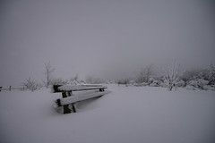 White Easter (crazyhorse_mk) Tags: winter white mountain snow forest dark bench easter baden schwarzwald blackforest badenwuerttemberg schliffkopf sigma1020 400d klaiber
