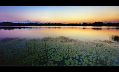 Tranquility (scott masterton) Tags: light sunset usa lake scott orlando florida destiny fascinating masterton maitland