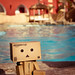 [20/52] Danbo am Pool