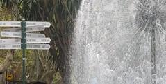 signpost (Tamamareen) Tags: fountain sydney signpost lizybones