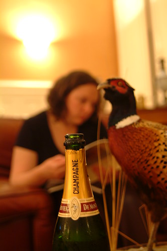 you mean your chateau didn´t come with stuffed pheasant?