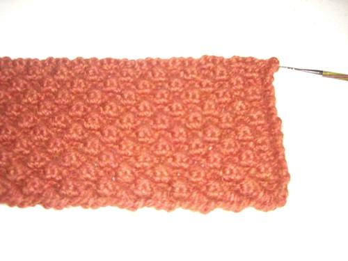 Copper Berry Bag Close Up