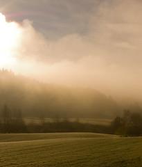 kvelde-høst-4.jpg (benbohmer) Tags: wood autumn light cloud mist green fall nature field clouds brightlågendalenautumnmistnaturewebexported