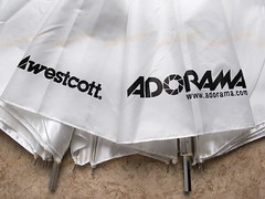 Westcott/Adorama white version