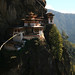 Also called Tigers nest
