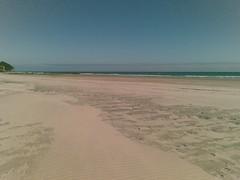 Fossil beach (farewell spit)