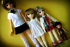 My (current) BJD family (r e n a t a) Tags: family green canon doll may bjd ronnie resin yoko cloe bluefairy latidoll pocketfairy lati tinyfairy rebelxti jaimedoll jaimedollcom