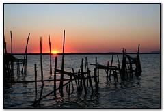 Sunset .... (Loca....) Tags: sunset sol portugal prdosol carrasqueira postais locabandoca duetos mdpd2008 ilustrarportugal srieouro my2008dailyphotodiary mdpd200801 512008