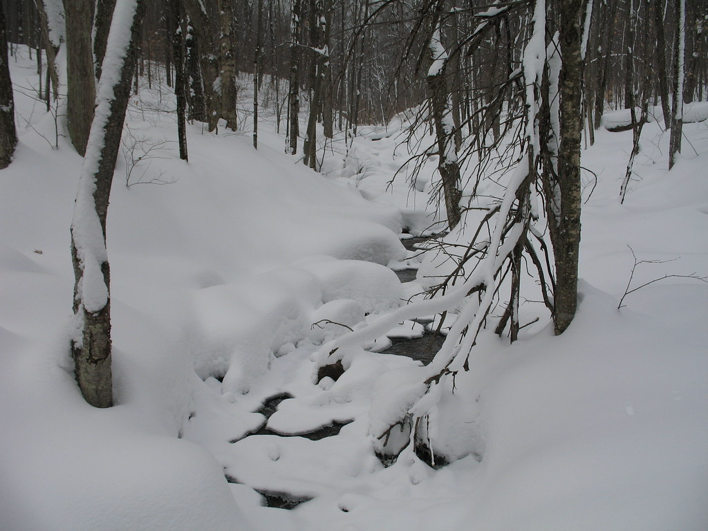 Creek under snow