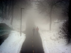 Midday fog (Ann Althouse) Tags: fog couple path