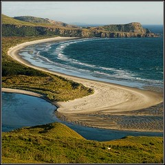 Victory Beach, Otago Peninsula, Dunedin, NZ (Ian@NZFlickr) Tags: bravo nz otago dunedin peninsula aotearoa littlestories victorybeach flickrsbest anawesomeshot flickrplatinum superbmasterpiece magidonkey picswithsoul