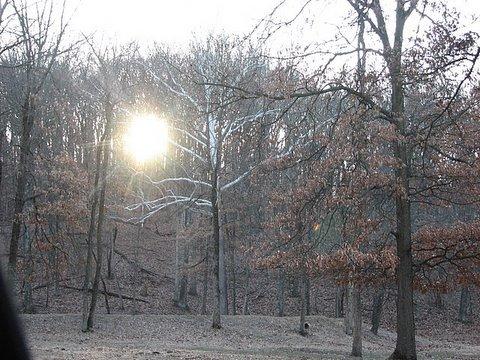 sunset in Lone Elk Park