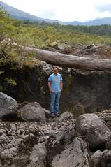 Wood, me and Rocks (MAR7INEZ) Tags: chile trip patagonia wow landscape nikond50 lagos lugares stunning carreteraaustral frutillar surdechile llanquihue southernchile parquepumalin parquenacionalqueulat pumalinpark chileanpatagonia