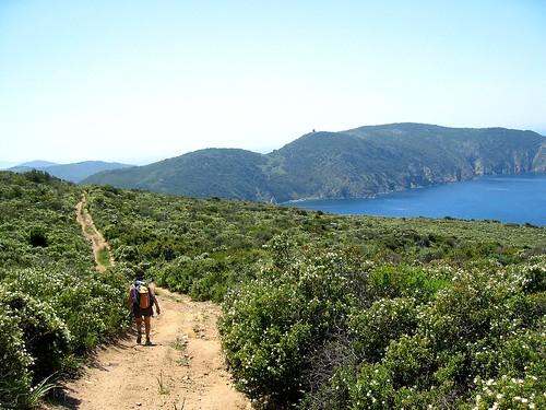 Sur la piste de Pascianu : la côte et la tour d'Urchinu