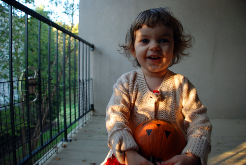 pumpkin and ladybug 035
