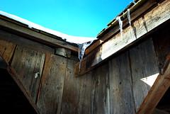 Ice and Sun (Property#1) Tags: toronto ontario canada nature photo december image photos images pioneer sigmalens blackcreekvillage property1 pentaxk10d